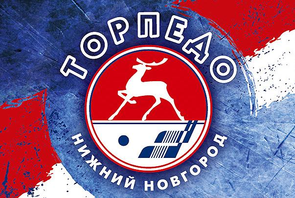 торпедо нижний новгород хк: